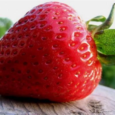 «Клубничный аромат» состоит из более, чем 50 химических элементов