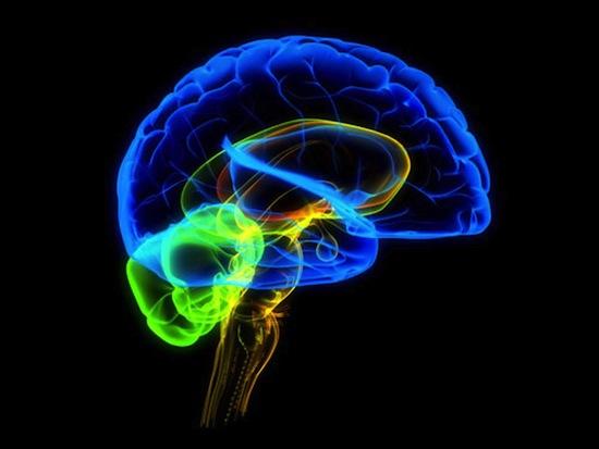 5 самых умопомрачительных вещей, которые научилась делать наука