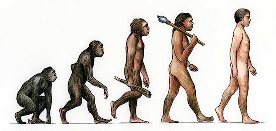 скачать игру через торрент эволюция
