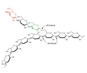 Структура гликогена