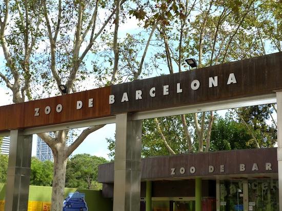 Барселона глазами Фактрума: 10 фактов о барселонском зоопарке