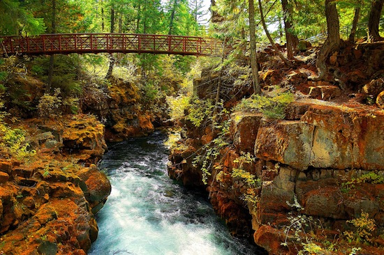 Река Рог в Орегоне — единственная в мире река, в которой растут подводные грибы