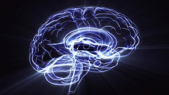 10 самых свежих исследований человеческого мозга