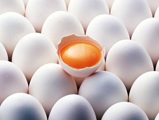 Куриные яйца необязательно хранить в холодильнике