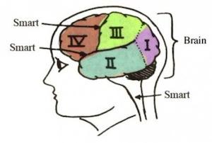 Тесты IQ не определяют уровень интеллекта