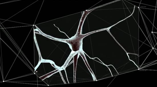Учёные намерены построить суперкомпьютер, имитирующий деятельность человеческого мозга