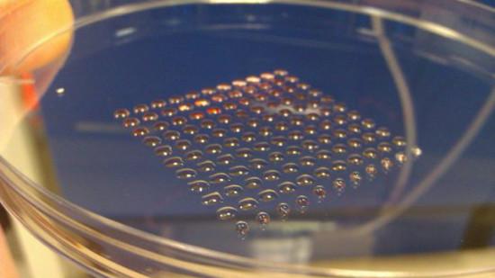 Человеческие эмбриональные стволовые клетки можно печатать на 3D-принтере