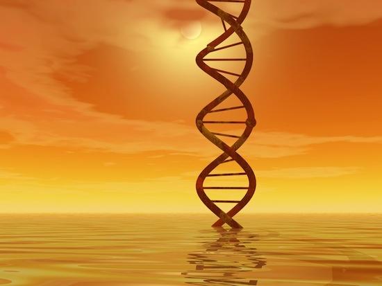 Солнечные лучи могут разрушать ДНК