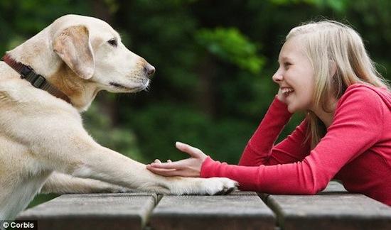 Через 10 лет мы сможем разговаривать с животными