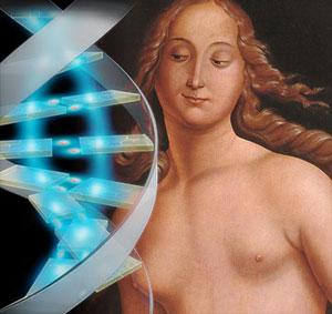 У всех людей есть общий предок по женской линии — «Митохондриальная Ева»