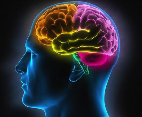 Чрезмерное развитие умственных способностей человека ни к чему хорошему не приведёт