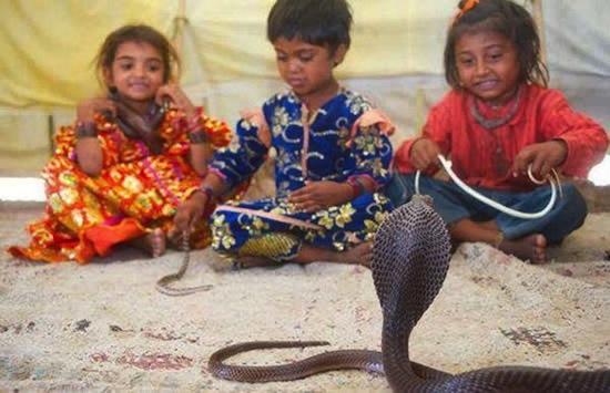 Дети племени Вади приручают ядовитых змей с двухлетнего возраста