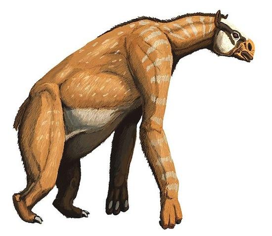 3,5 млн лет назад существовали «лошади-гориллы»