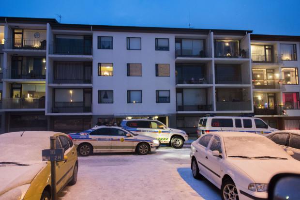 За всю историю полиции Исландии её сотрудники застрелили только одного человека