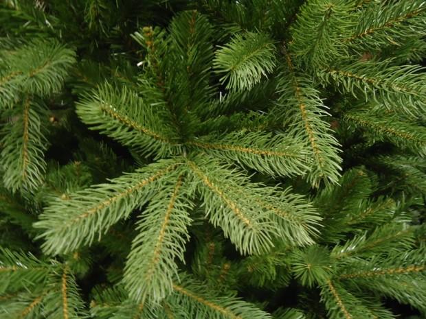 Живые новогодние ёлки наносят меньше вреда экологии, чем искусственные