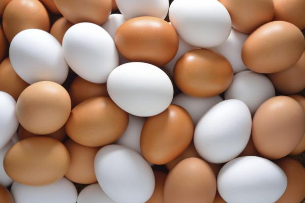 Куриные яйца белые и коричневые