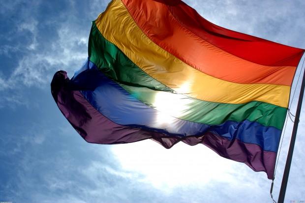 По мнению учёных, у гомосексуалов ключевые неврологические различия с гетеросексуалами формируются ещё в утробе матери