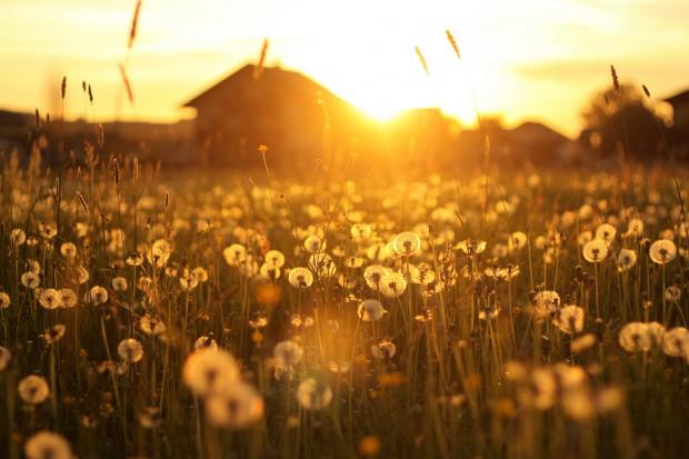 Если вы нахмуритесь при ярком солнечном свете, то можете разозлиться