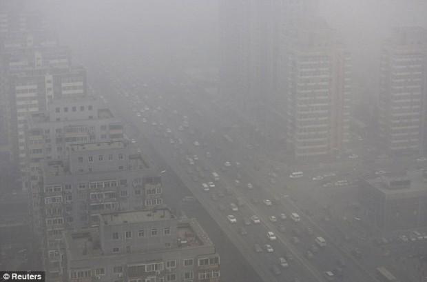 Из-за смога в Пекине остановился процесс фотосинтеза у растений