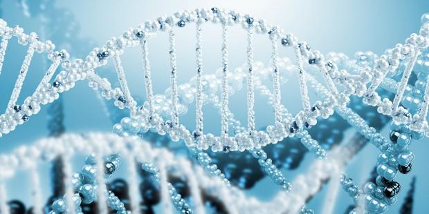 Несколько характеристик вашей личности, которые, как ни странно, определяются генами