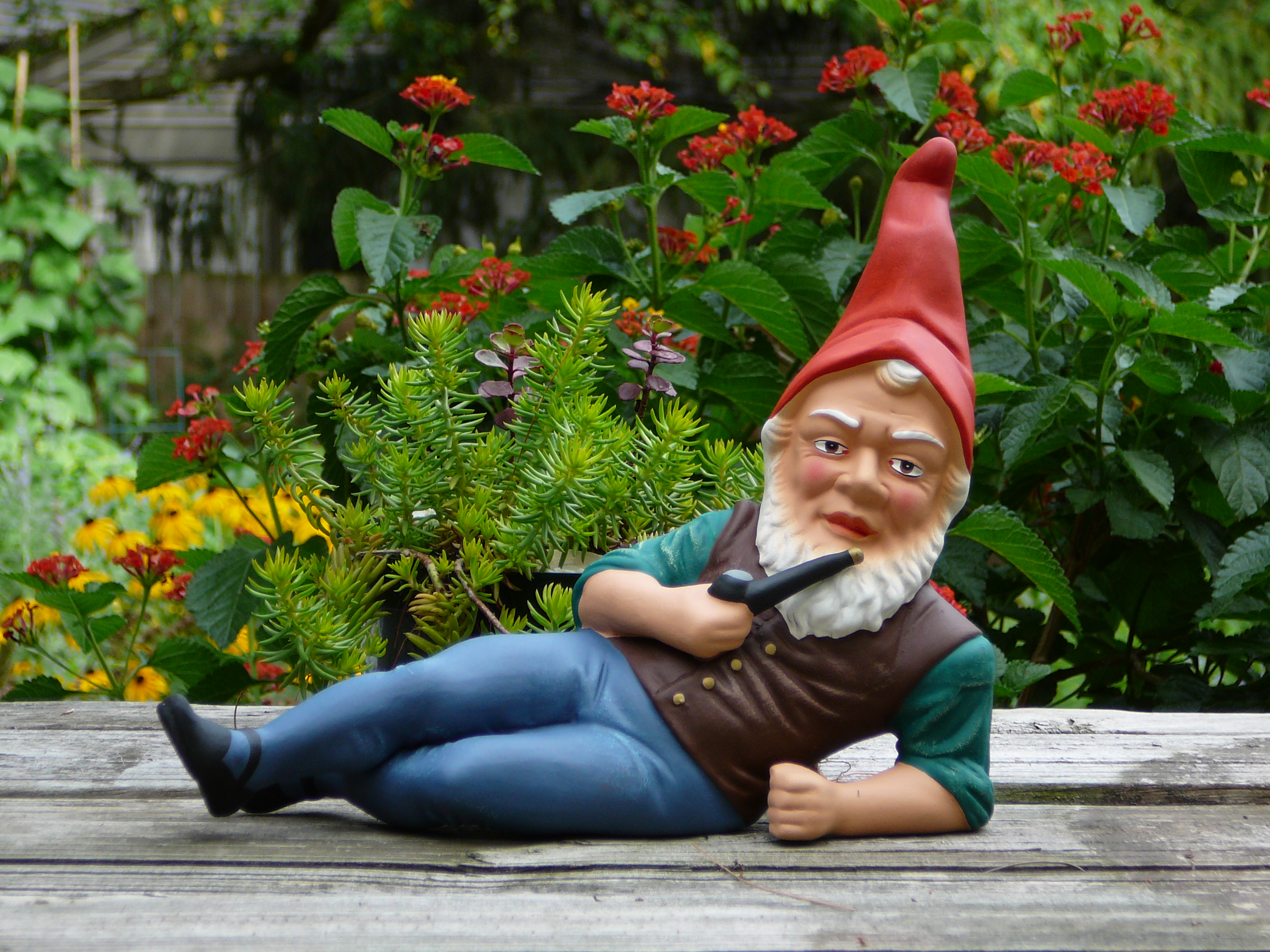 Yard gnome porn nackt toons