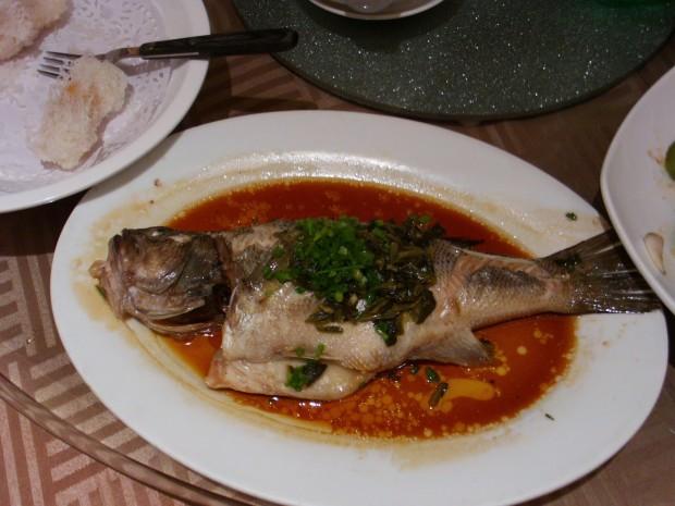 Рыба инь-ян / © kpac883.blogspot.com