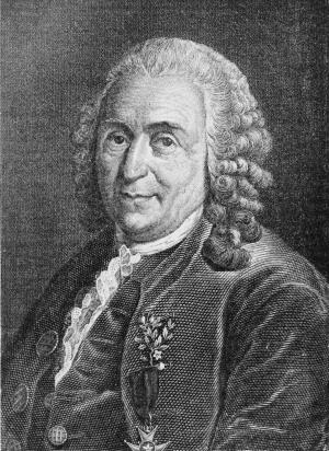 Карл Линней / © Wikimedia