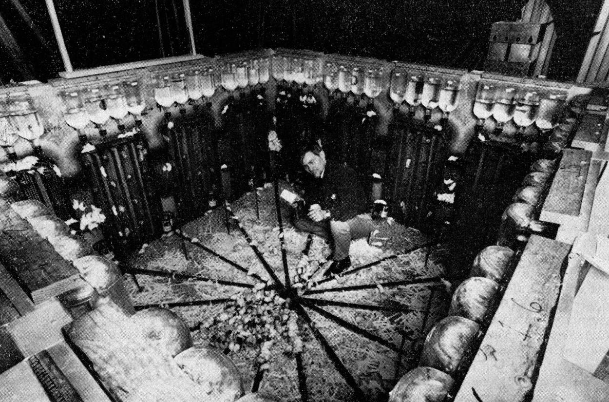 Джон Кэлхун: Как мыши уничтожили рай