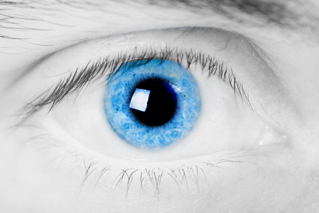 Цвет глаз голубой