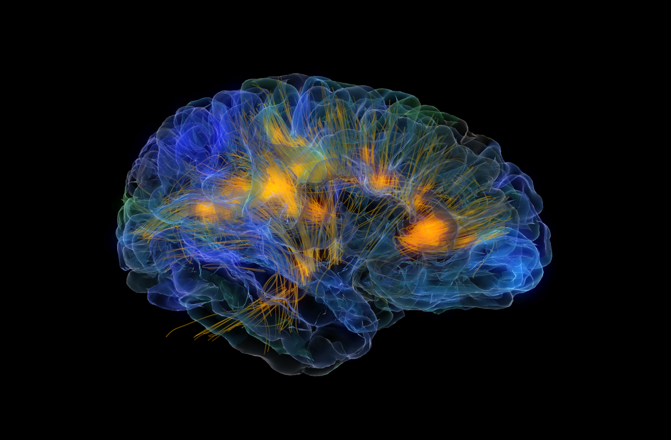 10 увлекательных способов манипулировать вашим мозгом