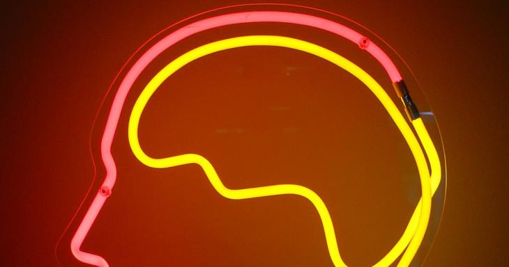 «Ваш мозг — ленивая сволочь» или как предотвратить застывание и деградацию разума