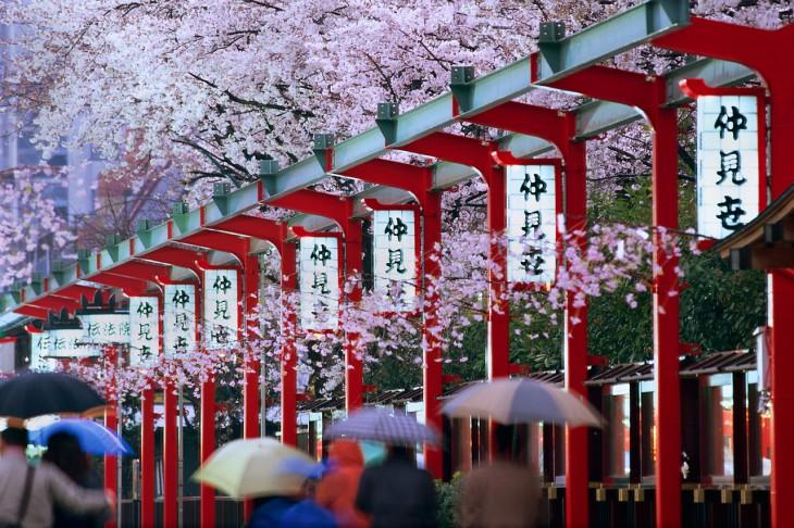 «Живи, будто ты уже умер»: 7 принципов жизни японцев