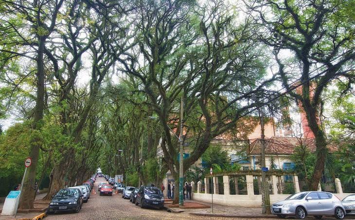 Загляните на самую зеленую улицу в мире!