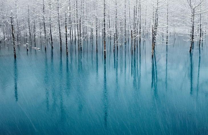 25 невероятных фотографий без фотошопа