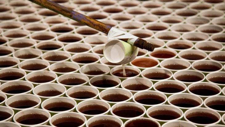 Он поставил 66000 стаканчиков с водой на пол. Когда зрители подошли ближе, у них пропал дар речи!