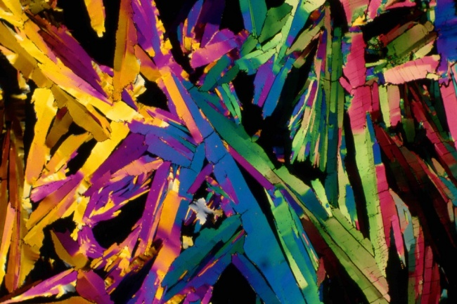 25�снимков под микроскопом, доказывающих, что каждая вещь�— это Вселенная