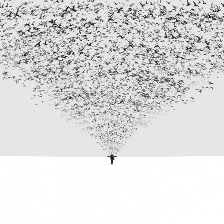 © Hossein Zare