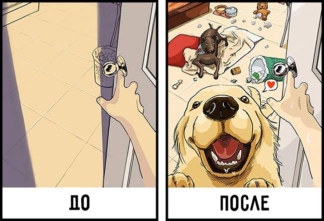 Как меняется жизнь когда в доме появляется собака