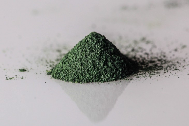 All-spirulina.ru
