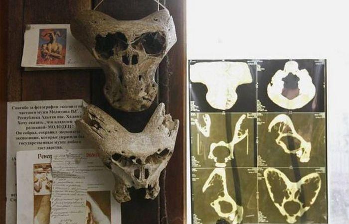 Таинственные находки в горах Адыгеи: черепа «чужих» и чемоданы нацистов