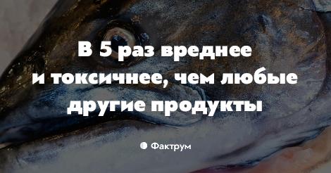 Токсиколог: Норвежский лосось — самая токсичная еда во всём мире рекомендации