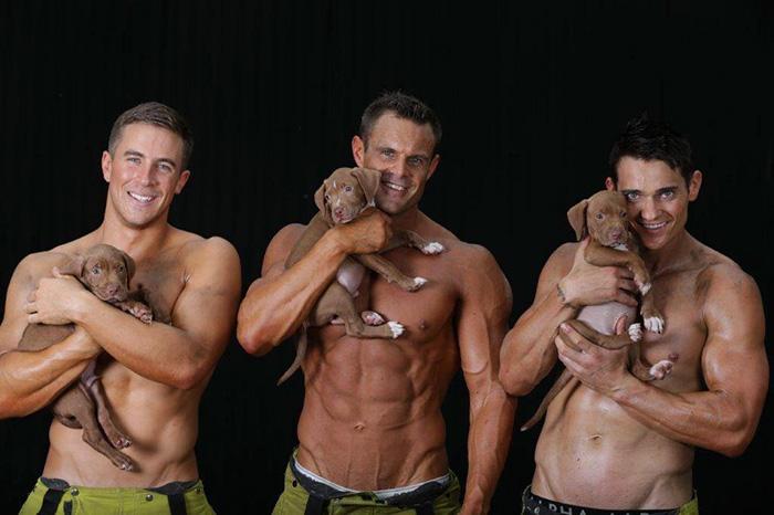 Сила и очарование: брутальные пожарные сфотографировались со щенятами для календаря