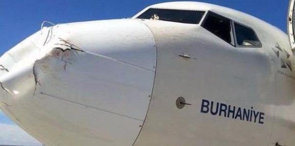 Вот что может сотворить с самолётом встреча со стаей птиц!