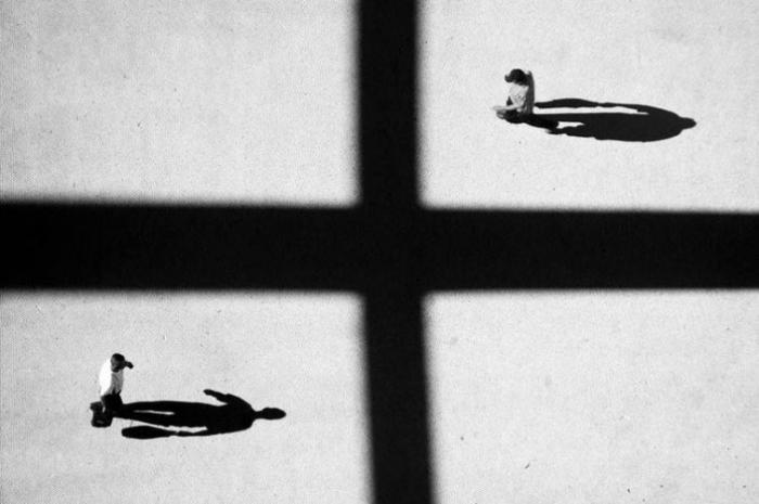 Тени отбрасывают котов: 20 сюрреалистических фотографий Алексея Меньшикова