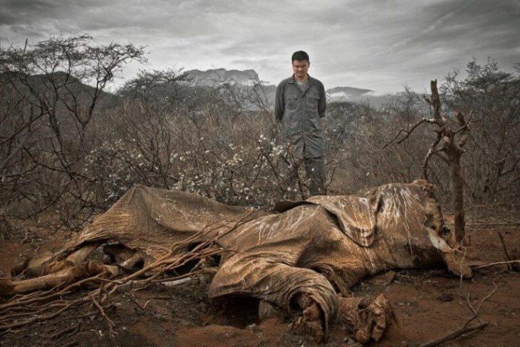 25 убедительных фото, доказывающих, что мы все в опасности