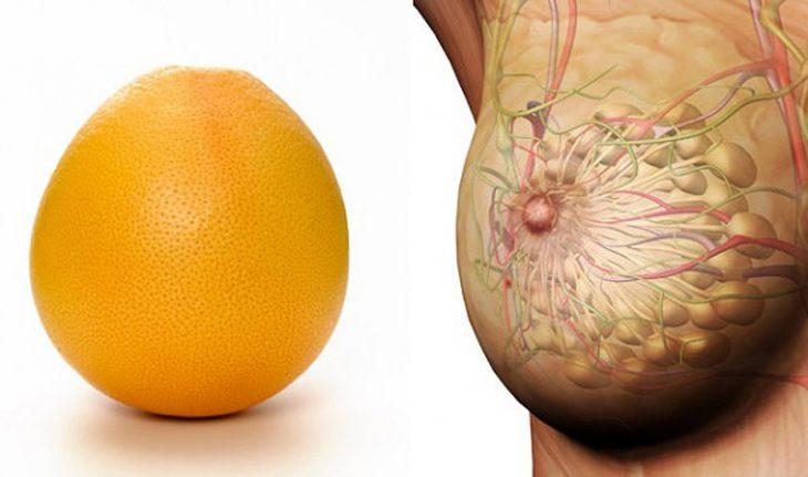 авокадо против жира на животе отзывы