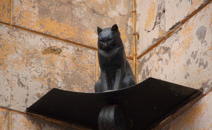 Кот Елисей — памятник ярославским кошкам