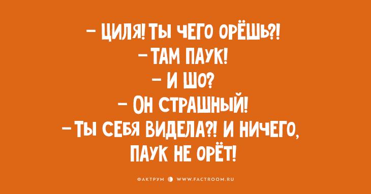 Дюжина обалденных одесских анекдотов!