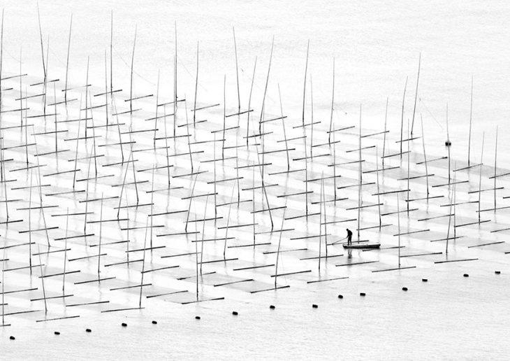 © Tugo Cheng