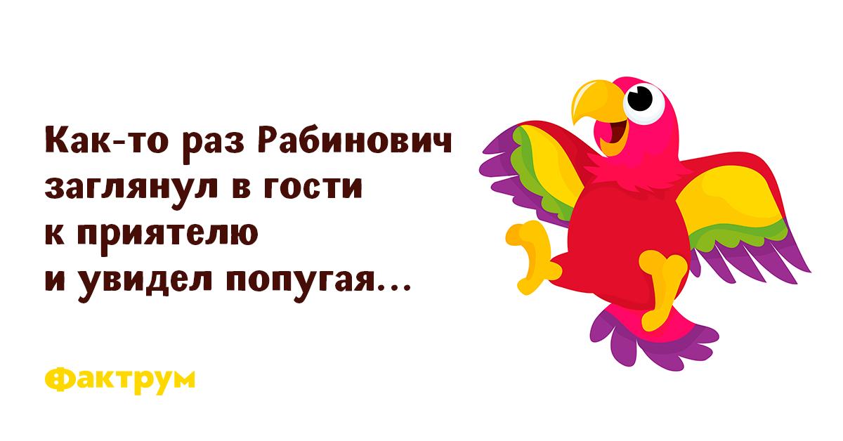 Анекдот Про Попугая Из Публичного